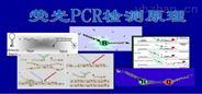 绵羊疱疹病毒通用PCR检测试剂盒价格