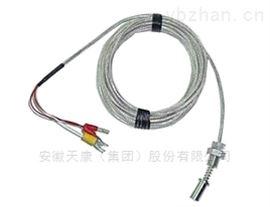 ·wzpm汽轮机专用热电阻