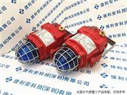 E2S BExTBG05系列防爆信號燈英國原裝進口