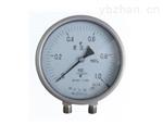 CY系列可定制軸向差壓表