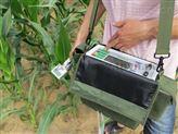 便携式光合仪_3051D光合作用仪