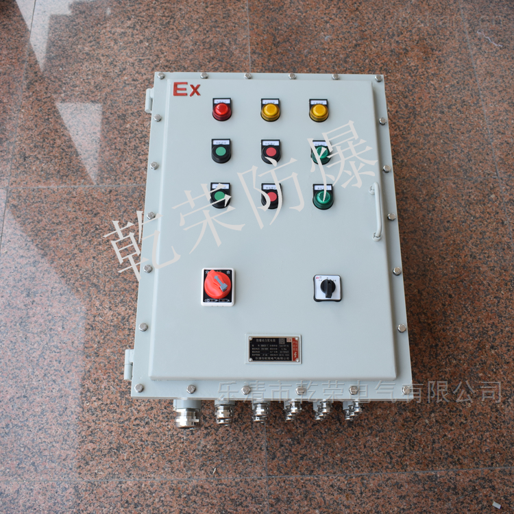 DZW挂壁式电动阀门防爆控制箱