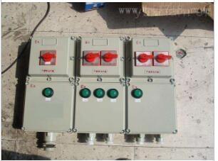 BXM53-12/63K100防爆配電箱