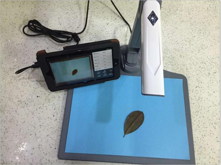 YMJ-P-植物葉面積測量儀