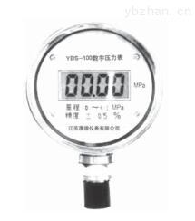 YBS-100系列数字压力表
