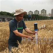 便携式作物株高测量仪
