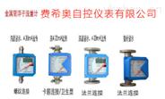 廠家直銷-金屬 轉子流量計