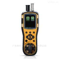 便攜式12小時二氧化氯在線監測氣體報警器