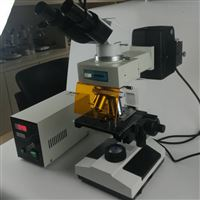 染色细胞检测生物荧光显微镜