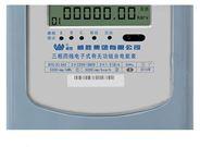 威勝DTS(X)343-3三相有無功組合電能表