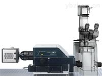 Andor高速活细胞激光共聚焦显微镜