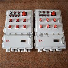 BXM防爆配电箱电伴热带 防爆箱