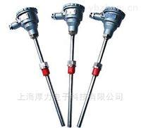 WZP-240系列防爆热电阻