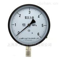 YA-100系列氨压力表