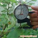 叶片厚度测量仪