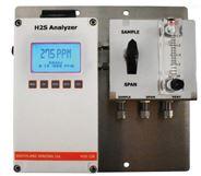 H2S-150-NG 型硫化氢分析器