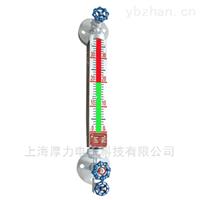 HL-UGS系列双色石英管液位计