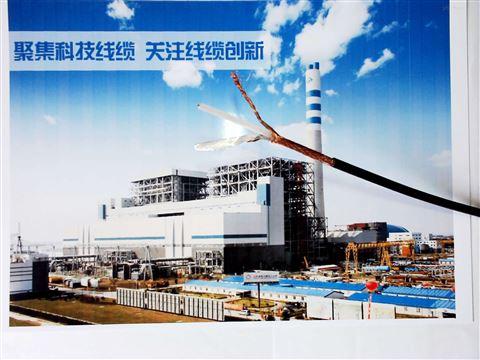 煤矿用监测通信电缆MHYVRP国标