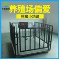 江华动物称重带围栏3吨精度500克电子畜牧秤
