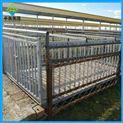 动物秤-牲畜秤带栅栏2吨1.5米×2米电子地磅