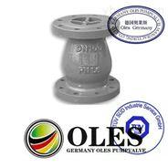德國奧萊斯OLES進口靜音止回閥