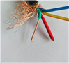 KFFRP防腐高温电缆