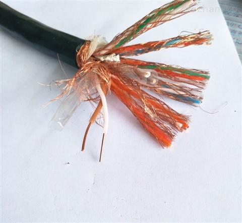 DJFFP22耐高温计算机电缆