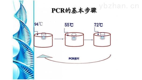 上海莼試生物技術有限公司