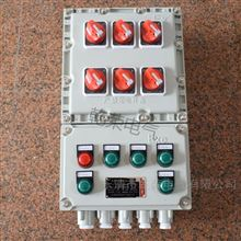 BXM5回路防爆动力配电箱