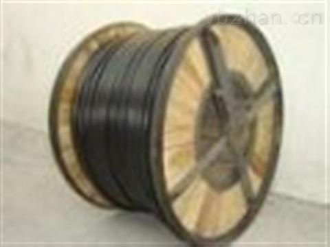 JYPV-3铜丝编织总屏蔽计算机电缆厂家