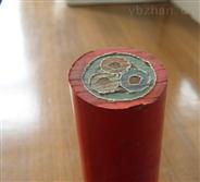 現貨銷售YC-J天車線-10*1.5