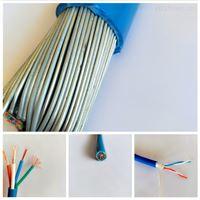 RVVZ22 16平方-25平方鎧裝電源線電纜