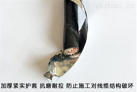 计算机电缆DJYP2VP2-500V-5×2×1.0