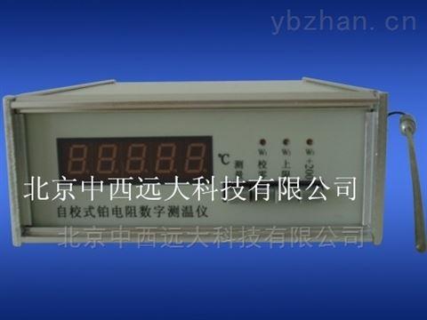 自校式铂电阻数字温度计/测温仪