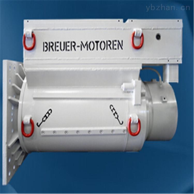 德国Breuer Motoren变频电机