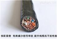 計算機控制電纜ZR-DJYVP