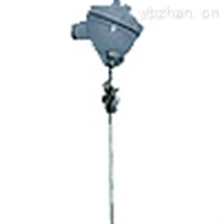 WRN-01T安徽天康热套式热电偶、热电阻
