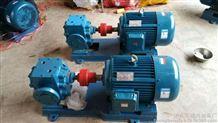 華潮牌LCT系列LCT-50/0.6羅茨齒輪油泵
