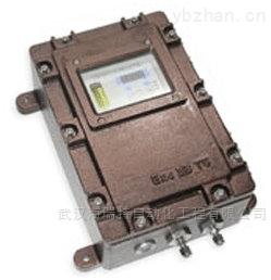 TS-4100氣體偵測器TS-4100Ex/Ts-4100Tx