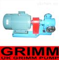 進口高溫齒輪泵(歐美進口10大品牌)