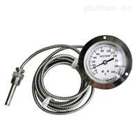 V20/V35/V45美国REOTEMP蒸汽式温度计