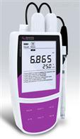 Bante320般特BANTE便携式pH离子计