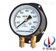 YZS-102shuang针shuang管ya力表