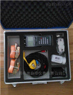 TDS-100F固定式超声波流量计价格