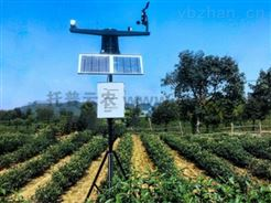 TZS-GPRS-I固定式土壤墒情自动监测站