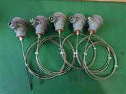 WZPK-231鎧裝熱電偶
