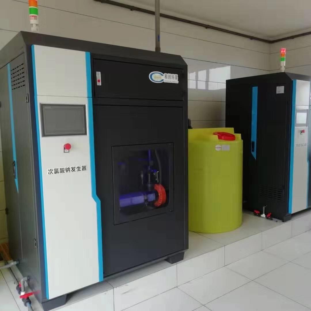 新疆次氯酸钠发生器-地表水厂消毒设备