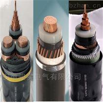 ZR-BPYJVT22ZR-BPYJVT22-3.6/6KV高压变频电缆