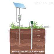 TPGSQ-4管式土壤水分测量仪