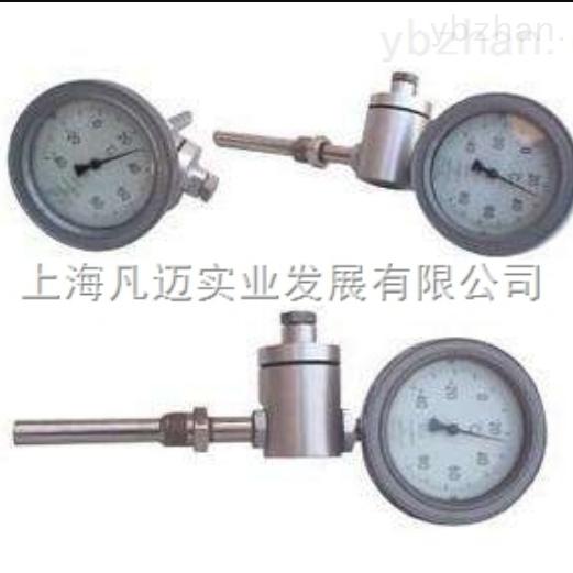 专用热电阻温度计